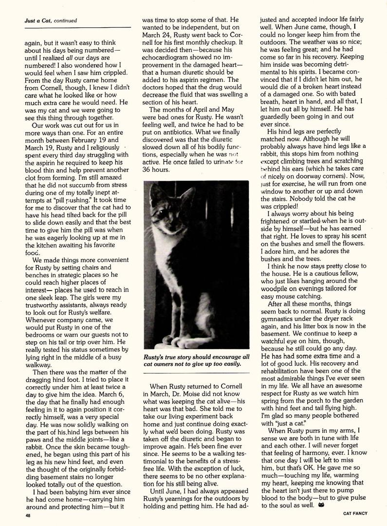 Cat Fancy Magazine - Patty Ann Smith